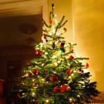 Leuchtkasten Weihnachtsbaum